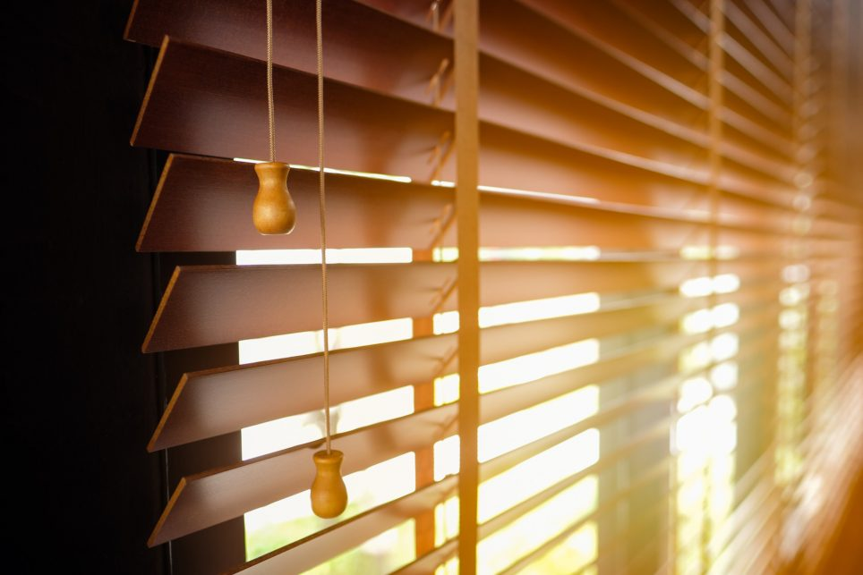 type of window blinds