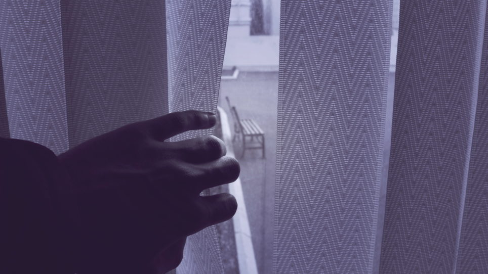 custom blinds for privacy